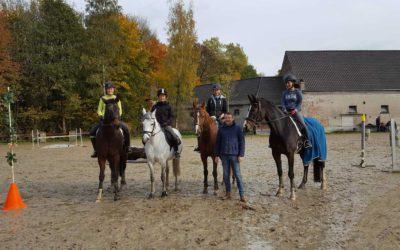 Feedback – Working Equitation Kurs, Ratingen